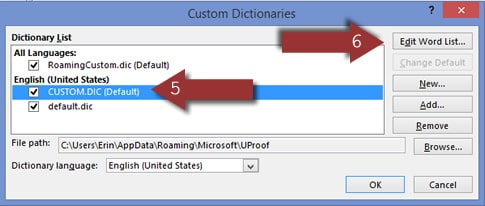 Word 2013 Custom Dictionary Window