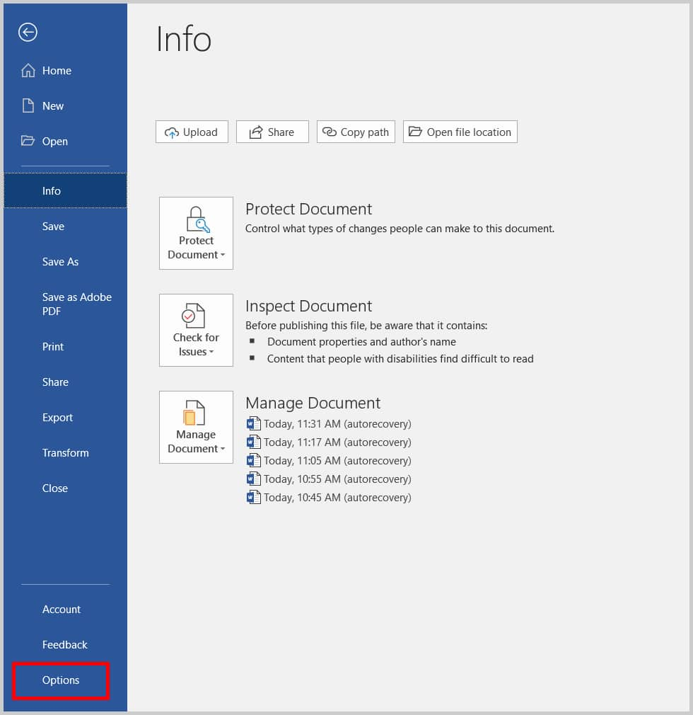 Options in the Backstage view of Microsoft Word 2019 / Word 365
