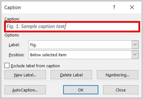 Caption text box in the Caption dialog box in Word 2019 / Word 365