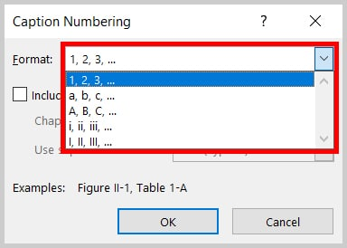 Format menu in the Caption Numbering dialog box in Word 2019 / Word 365