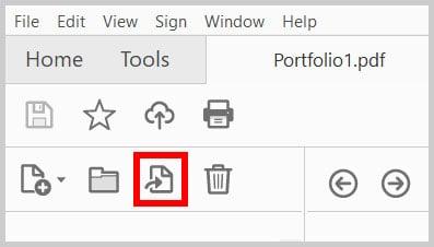 Extract Button in the Portfolio Navigation Pane in Adobe Acrobat
