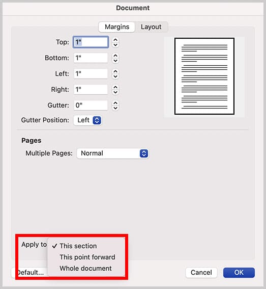 """""""This section"""" option in the Document dialog box in Word for Mac"""