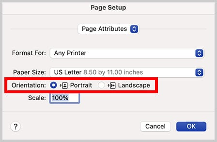 Portrait and Landscape orientation in the Page Setup dialog box in Word 365