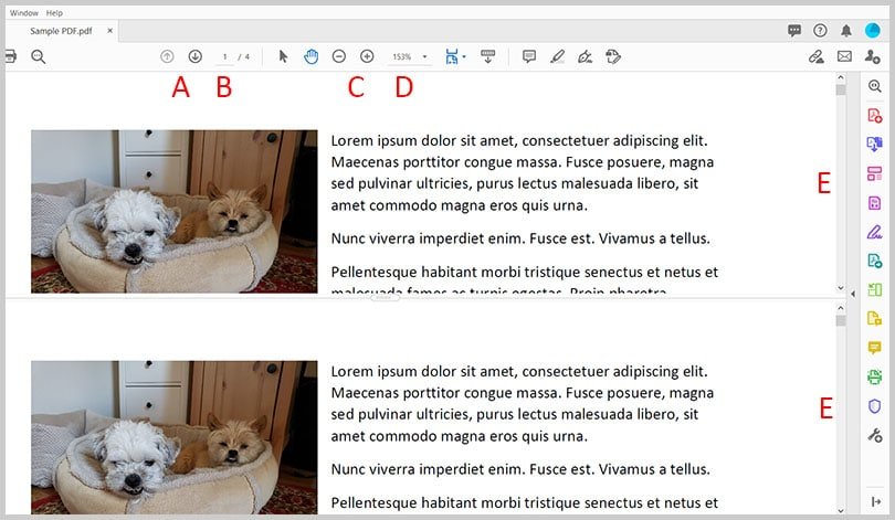 Split view with navigation in Adobe Acrobat